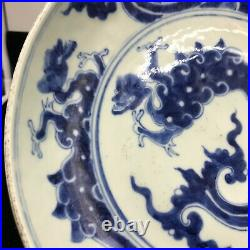 Antique Chinese Hand Painted Blue White Large Porcelain Plate Bowl Qing Dynasty