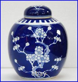 Chinese Blue White Glazed Porcelain Famille Vase