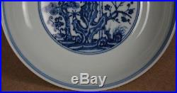 Elegant Antique Chinese Blue And White Porcelain Plate Marked Xuande I3781