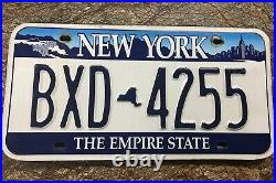 New York City License Plate Blue On White Featuring Niagra Falls