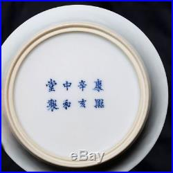 Pair Antique Chinese Blue And White Porcelain Landscape Plate KangXi FA300