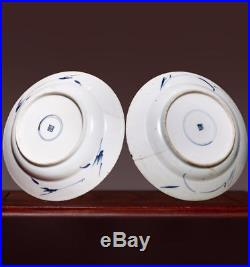 Pair of Chinese Qing Dynasty KangXi Old Plate Blue and white Porcelain Dish HX60