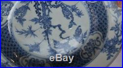Rare antique 18th chinese blue and white plate