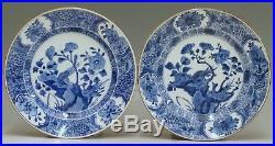 @ SUPERB @ Set Antique Chinese 18th C Porcelain Blue+White Export Plates Kangxi